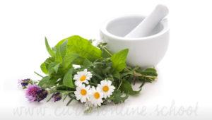 Curso de herbodietetica y homeopatia online