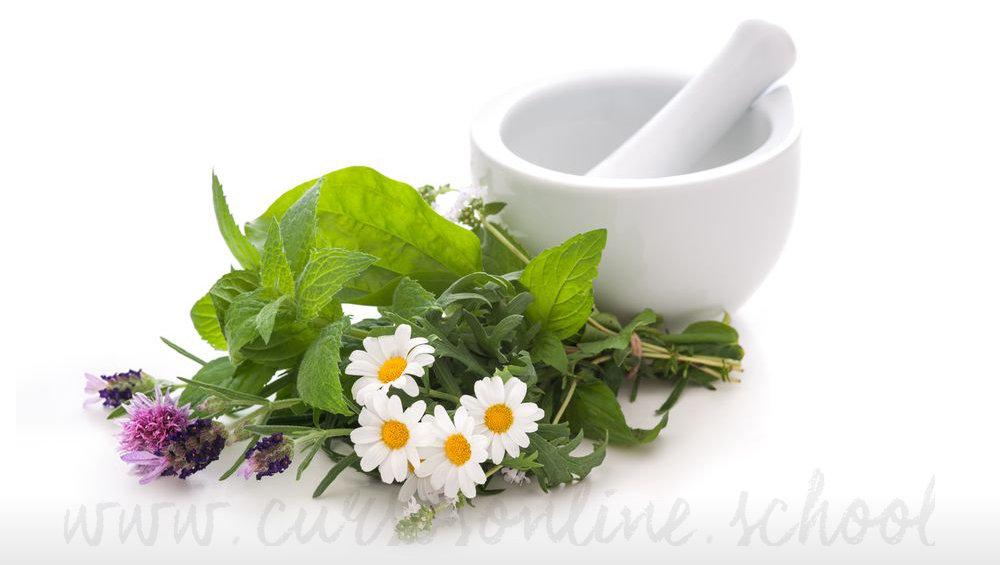 curso herbodietetica homeopatia online